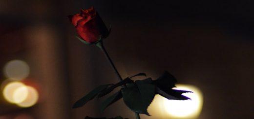 Night Love Ringtone