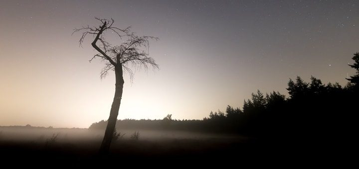 Mysterious Atmosphere Ringtone